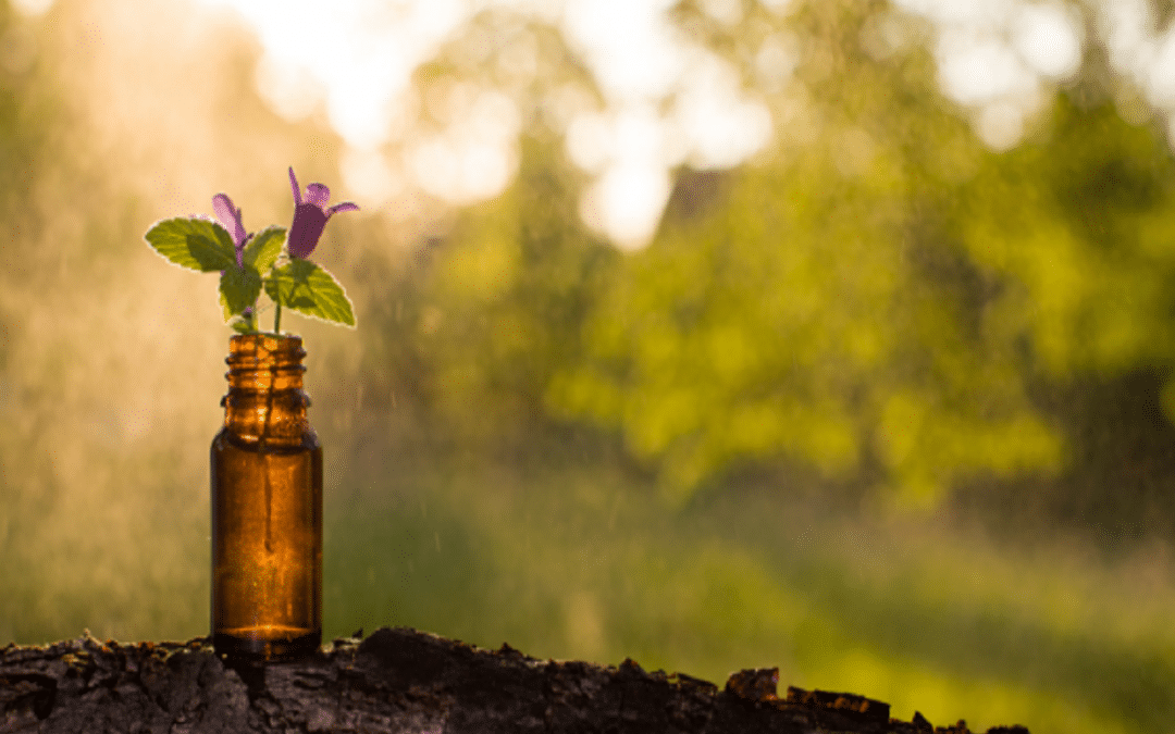 Can Aromatherapy Heal You?